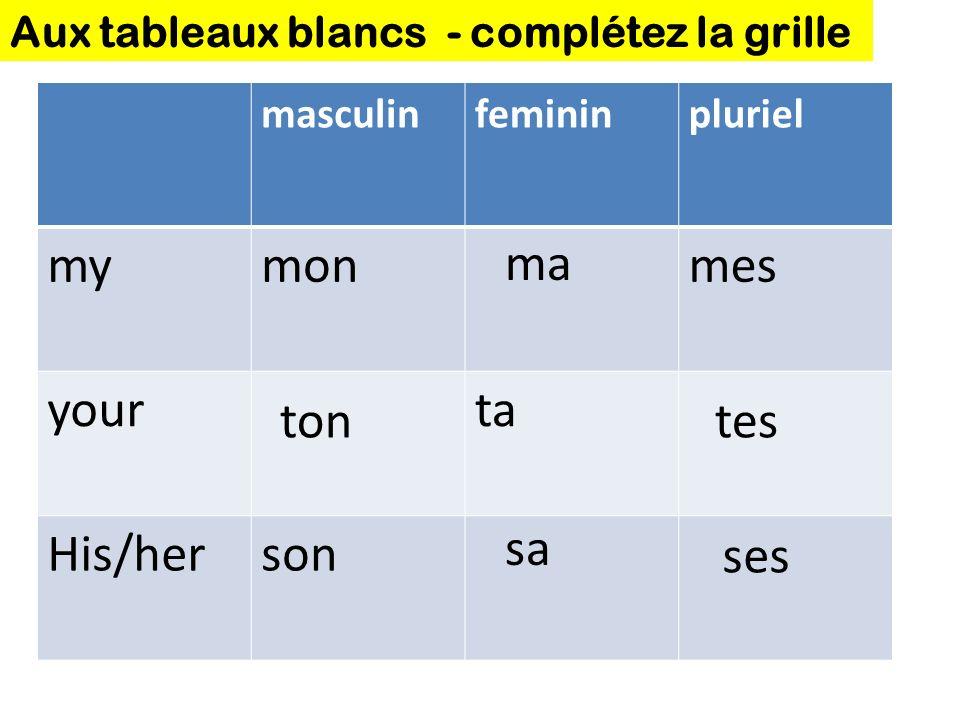 masculinfemininpluriel mymonmes yourta His/herson Aux tableaux blancs - complétez la grille ma tontes sa ses