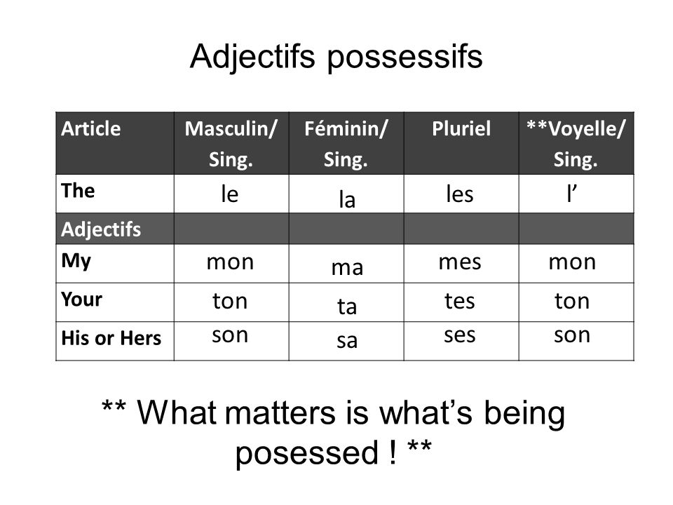 Adjectifs possessifs Article Masculin/ Sing. Féminin/ Sing. Pluriel **Voyelle/ Sing. The Adjectifs My Your His or Hers ** What matters is whats being
