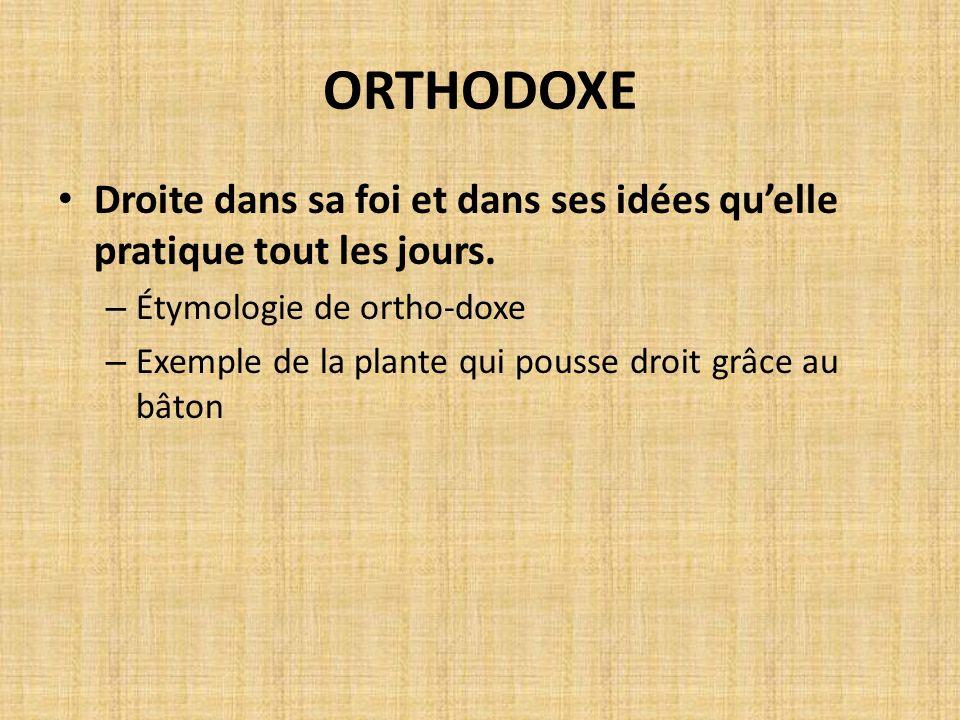 ORTHODOXE Droite dans sa foi et dans ses idées quelle pratique tout les jours. – Étymologie de ortho-doxe – Exemple de la plante qui pousse droit grâc