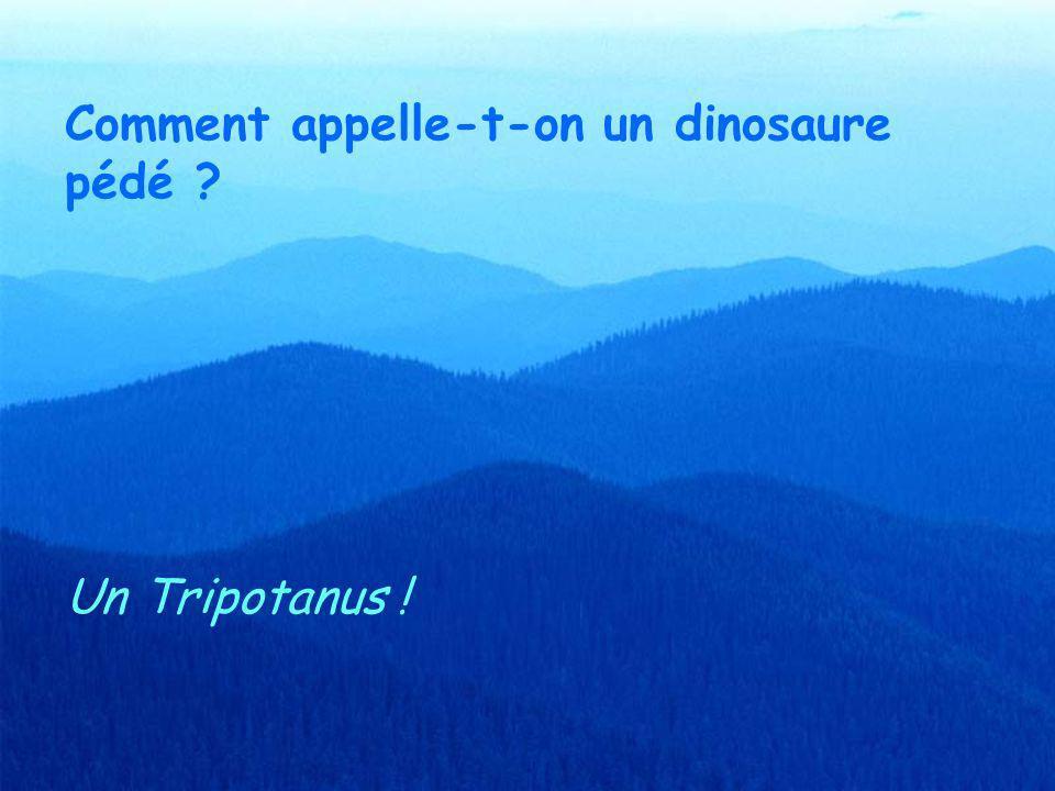 Comment appelle-t-on un dinosaure pédé ? Un Tripotanus !