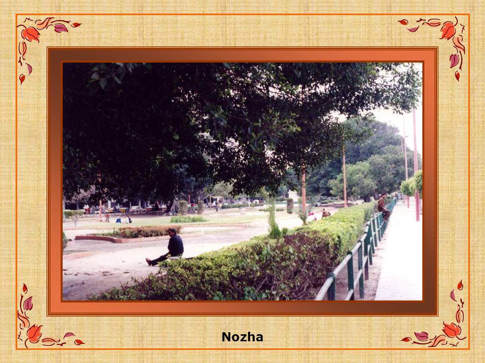 Nozha