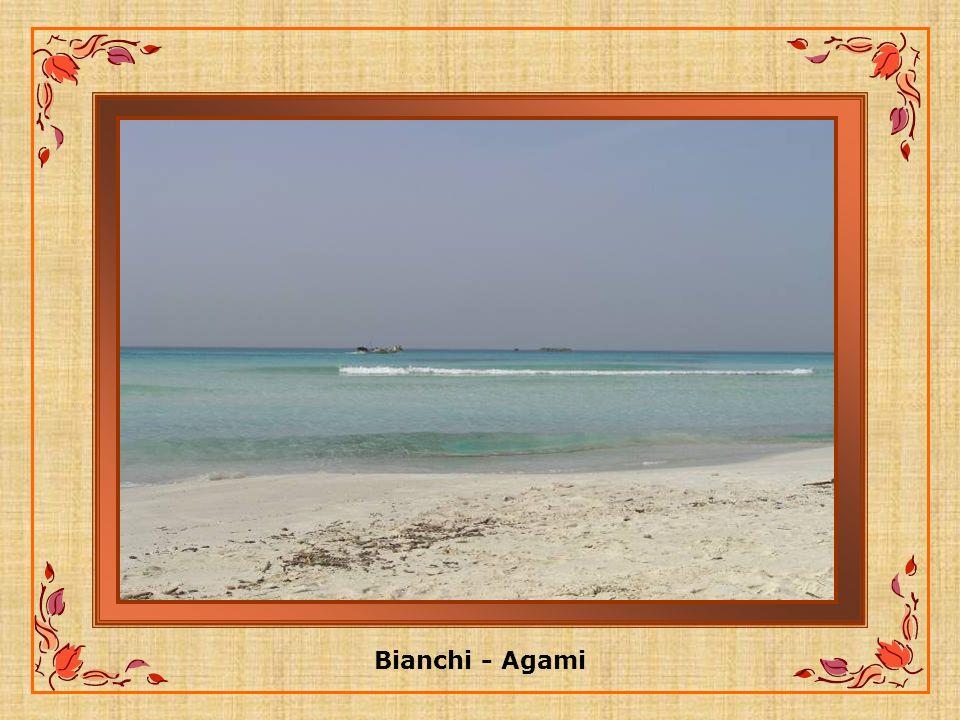 El-Agami: Les Sable blancs de cette région fameuse pour ses figues prend le nom du Sheikh Mohamed El- Agamy un homme saint de la région.