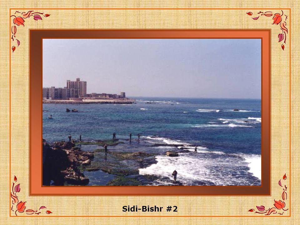 Sidi-Bishr #2