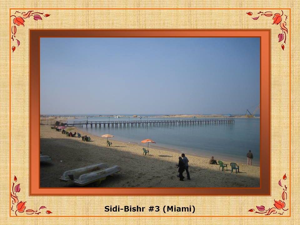 Sidi-Bishr #3 (Miami)