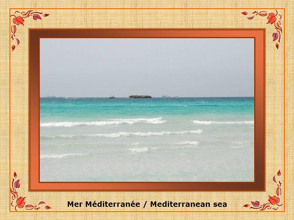 Mer Méditerranée / Mediterranean sea