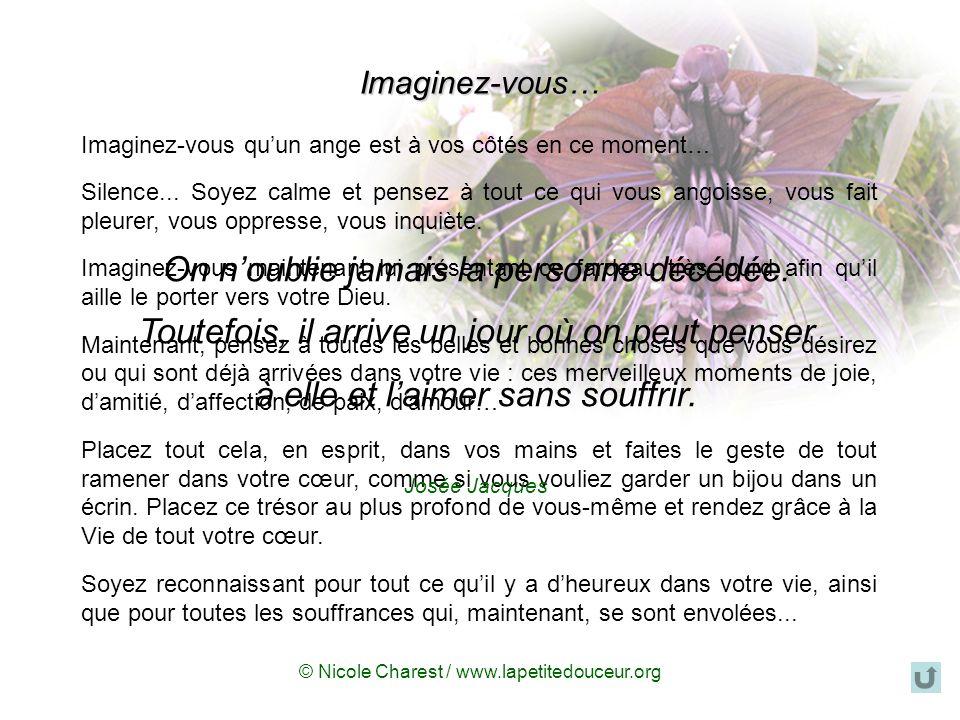 © Nicole Charest / www.lapetitedouceur.org Trouver lespoir face à la mort « Le deuil est certainement une des crises les plus importantes de la vie à