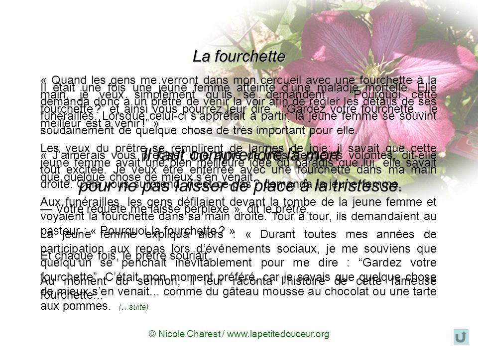 © Nicole Charest / www.lapetitedouceur.org Mourir, ce nest pas finir… …cest continuer autrement.