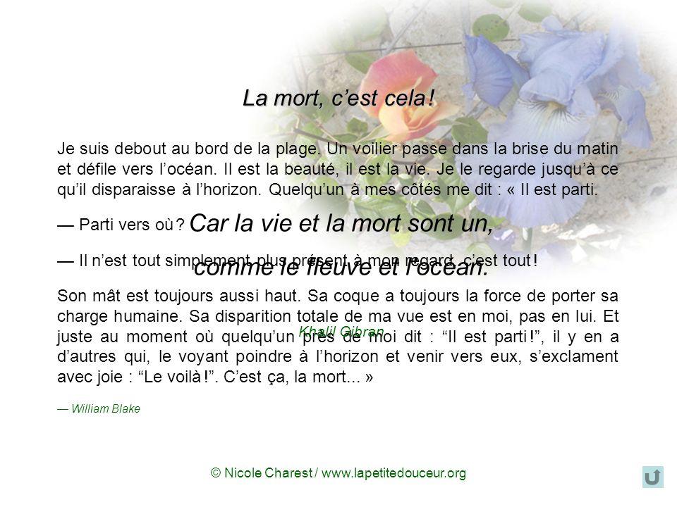 © Nicole Charest / www.lapetitedouceur.org La mort, cest cela .