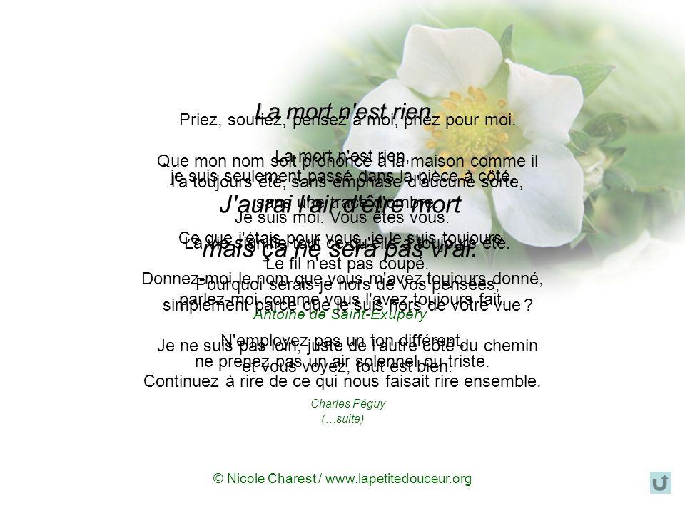 © Nicole Charest / www.lapetitedouceur.org La mort n est rien La mort n est rien, je suis seulement passé dans la pièce à côté.