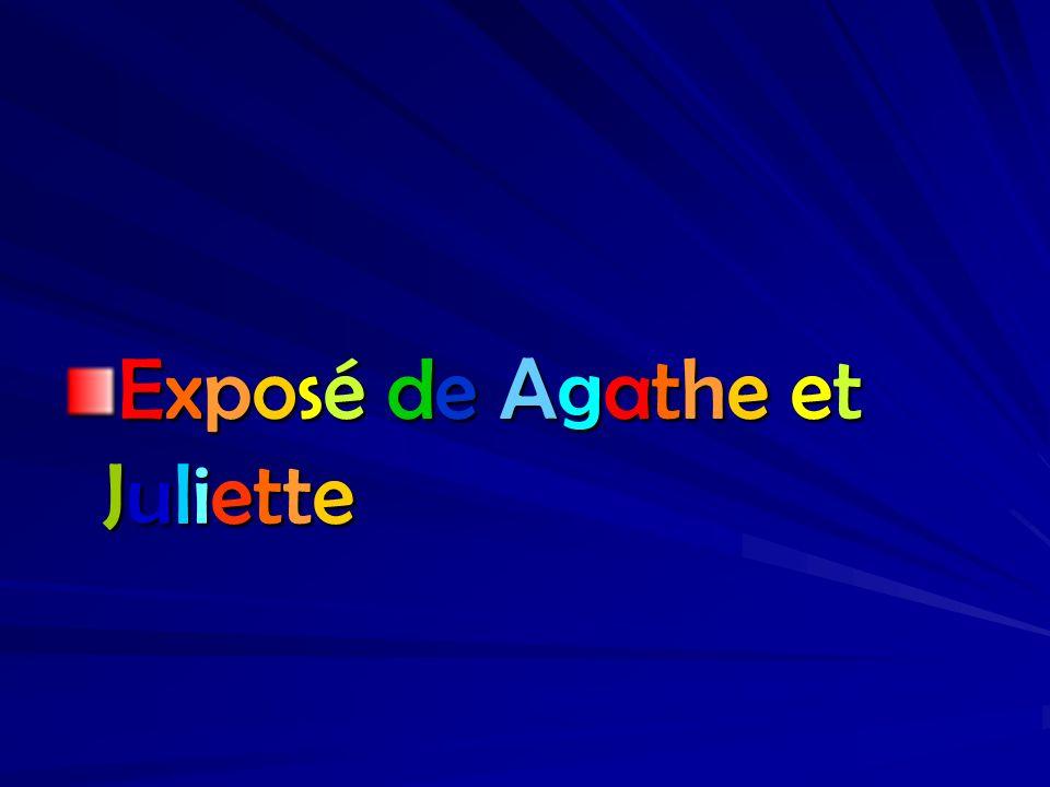 Exposé de Agathe etJulietteExposé de Agathe etJulietteExposé de Agathe etJulietteExposé de Agathe etJuliette