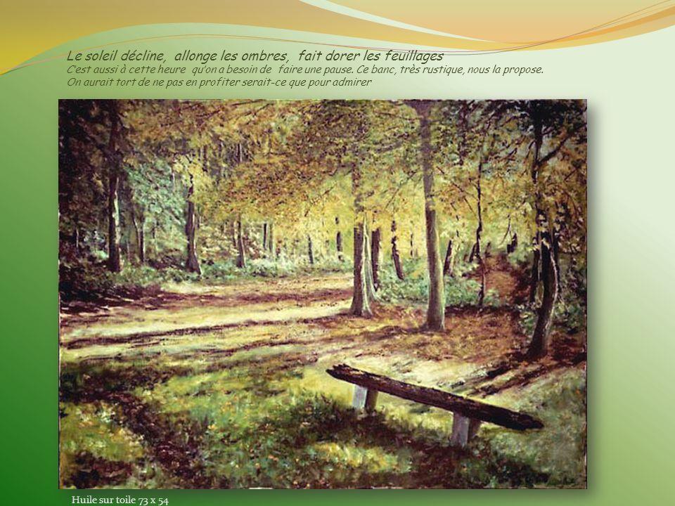Couleurs dautomne Un chemin de randonnée sous les grands arbres qui forment comme une cascade de couleurs..Comme le bouquet final dun feu dartifice. A
