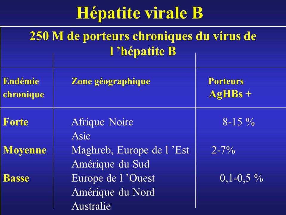 Hépatite virale B 250 M de porteurs chroniques du virus de l hépatite B EndémieZone géographique Porteurs chronique AgHBs + Forte Afrique Noire 8-15 %