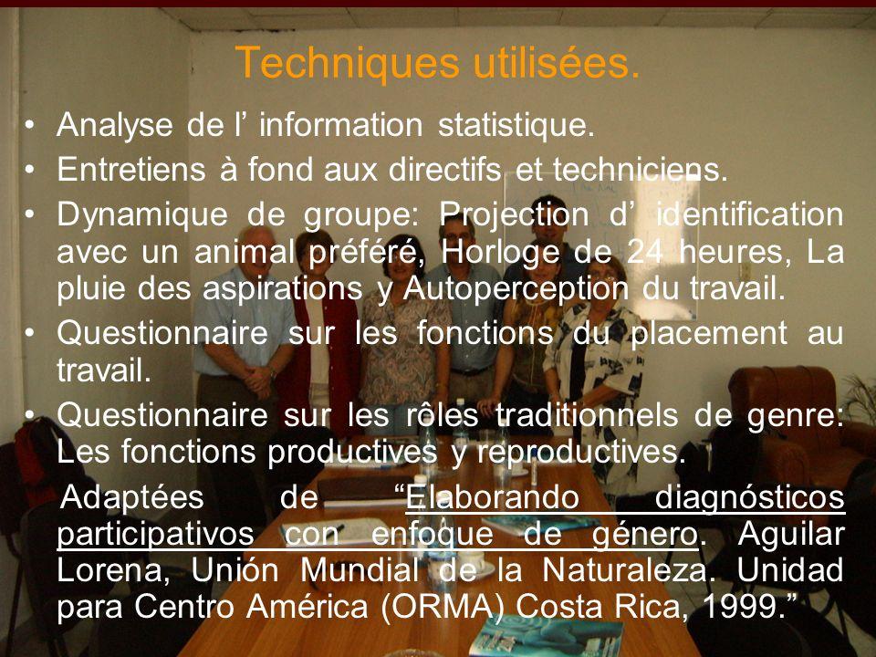 Techniques utilisées. Analyse de l information statistique.