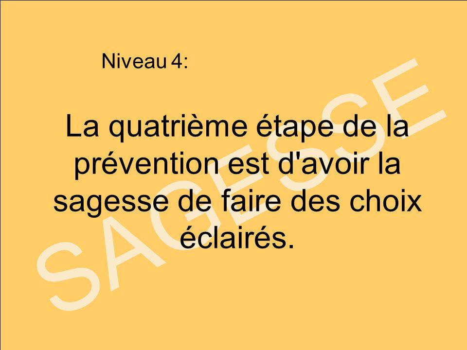 SAGESSE La quatrième étape de la prévention est d'avoir la sagesse de faire des choix éclairés. Niveau 4: