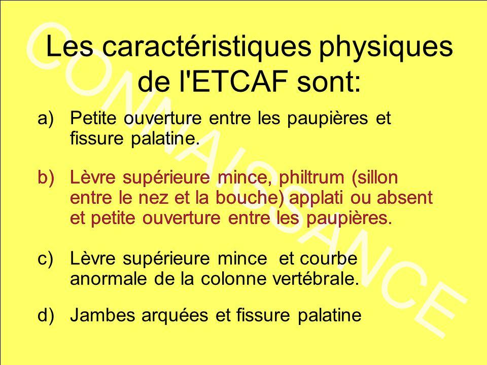 CONNAISSANCE Les caractéristiques physiques de l'ETCAF sont: a)Petite ouverture entre les paupières et fissure palatine. b)Lèvre supérieure mince, phi
