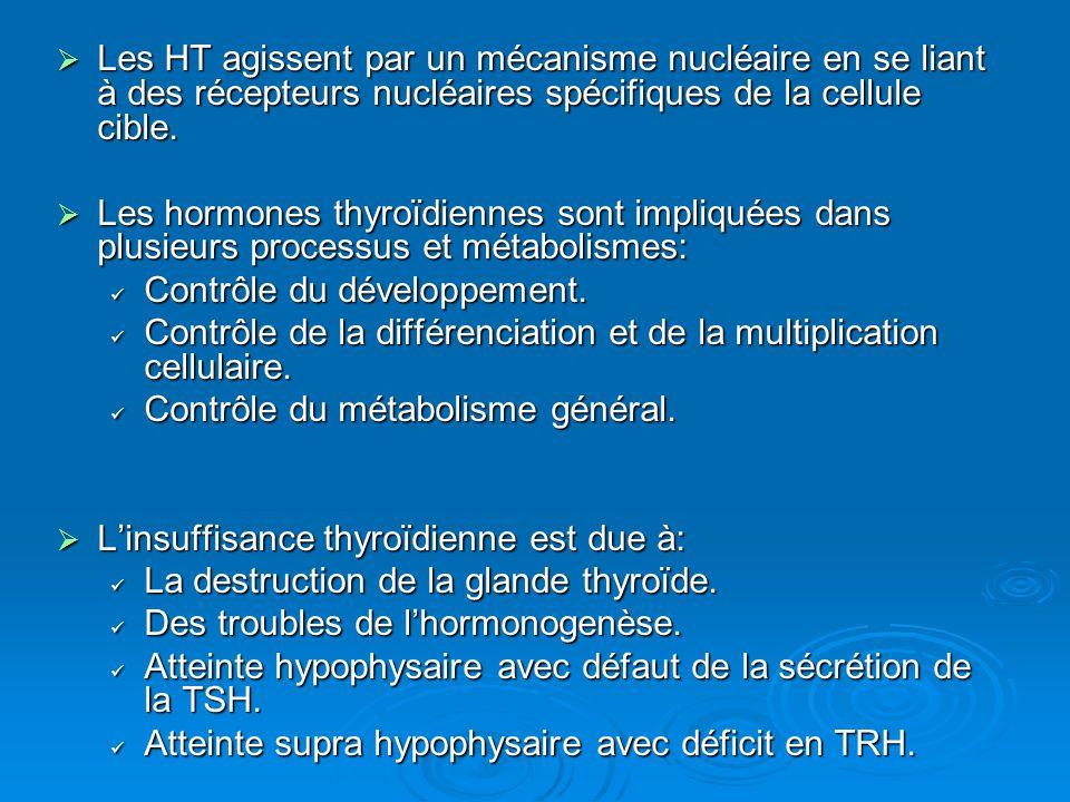 Les HT agissent par un mécanisme nucléaire en se liant à des récepteurs nucléaires spécifiques de la cellule cible. Les HT agissent par un mécanisme n