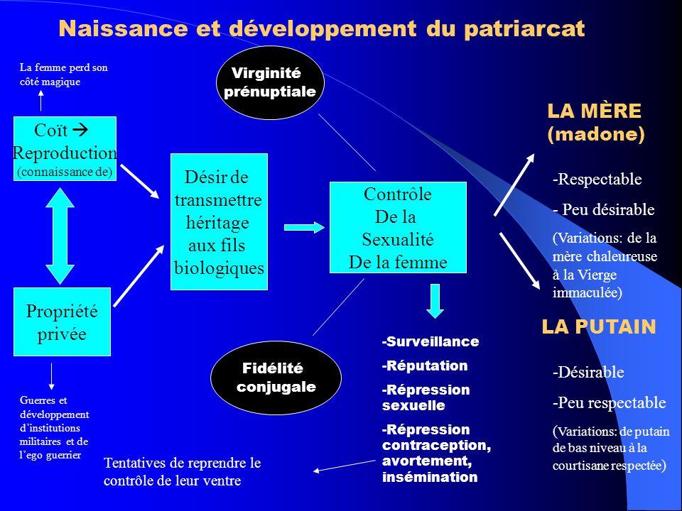 Naissance et développement du patriarcat Coït Reproduction (connaissance de) Propriété privée Désir de transmettre héritage aux fils biologiques Contr
