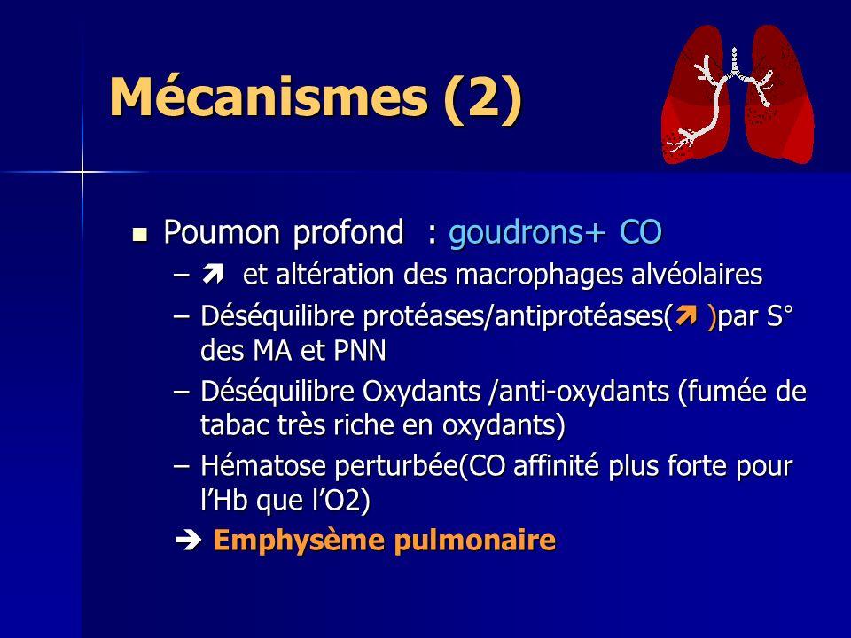 Mécanismes (2) Poumon profond : goudrons+ CO Poumon profond : goudrons+ CO – et altération des macrophages alvéolaires –Déséquilibre protéases/antiprotéases( )par S° des MA et PNN –Déséquilibre Oxydants /anti-oxydants (fumée de tabac très riche en oxydants) –Hématose perturbée(CO affinité plus forte pour lHb que lO2) Emphysème pulmonaire Emphysème pulmonaire