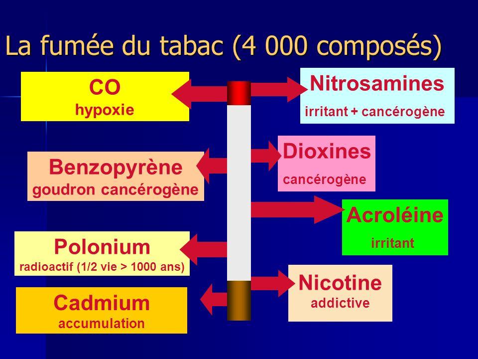 La fumée du tabac (4 000 composés) Nitrosamines irritant + cancérogène CO hypoxie Cadmium accumulation Benzopyrène goudron cancérogène Nicotine addictive Polonium radioactif (1/2 vie > 1000 ans) Dioxines cancérogène Acroléine irritant