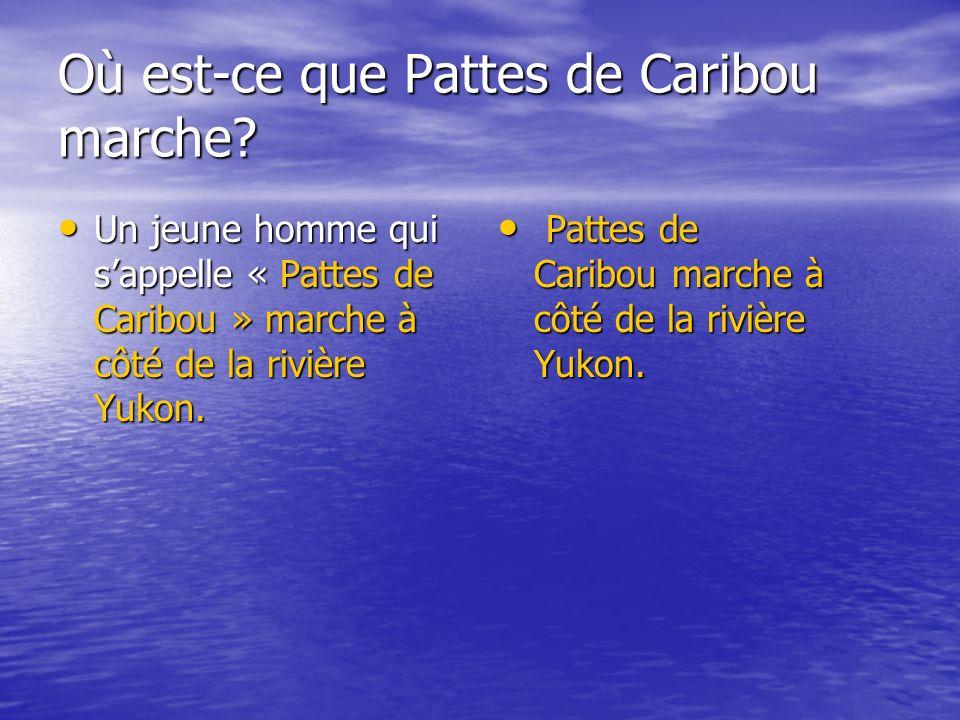 Où est-ce que Pattes de Caribou marche.