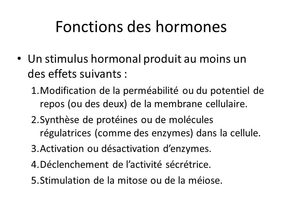 Fonctions des hormones Un stimulus hormonal produit au moins un des effets suivants : 1.Modification de la perméabilité ou du potentiel de repos (ou d