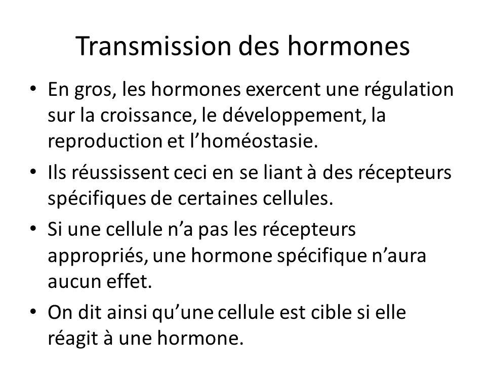 Transmission des hormones En gros, les hormones exercent une régulation sur la croissance, le développement, la reproduction et lhoméostasie. Ils réus