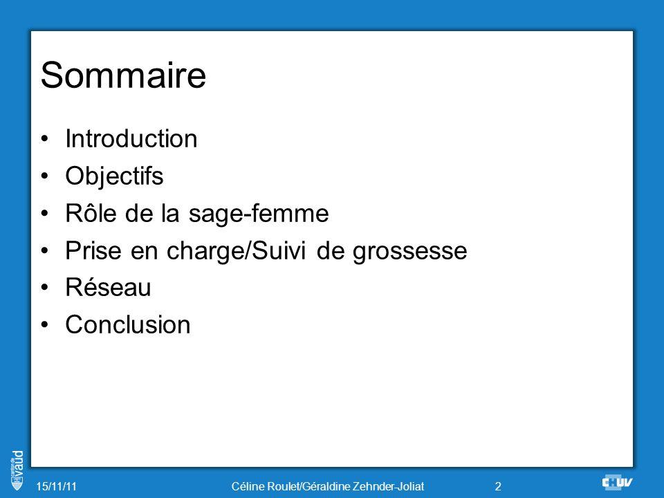 Introduction 2003: Création de la consultation par une sage-femme, Marie-Jo Vulliemin 2007: Augmentation de lactivité.