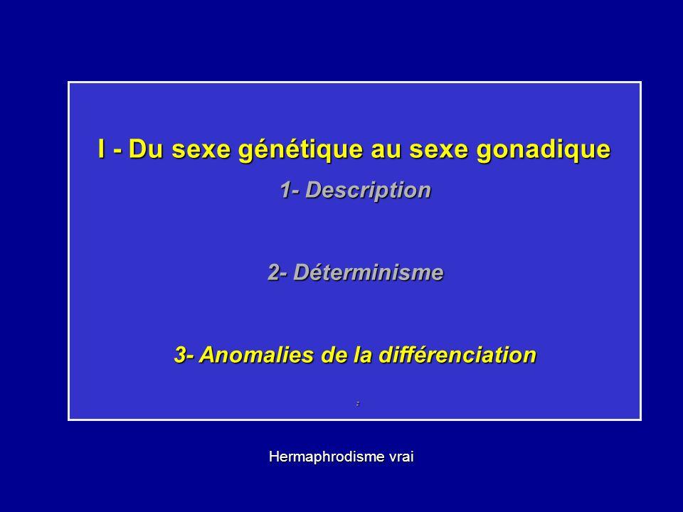I - Du sexe génétique au sexe gonadique 1- Description 2- Déterminisme 3- Anomalies de la différenciation : Hermaphrodisme vrai