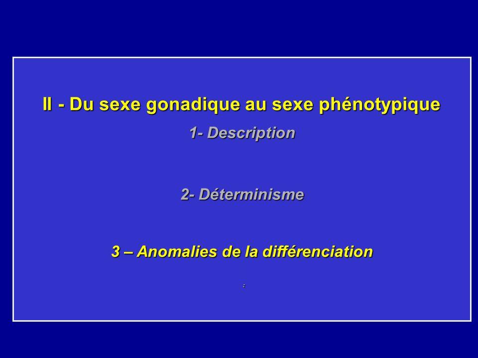 II - Du sexe gonadique au sexe phénotypique 1- Description 2- Déterminisme 3 – Anomalies de la différenciation :