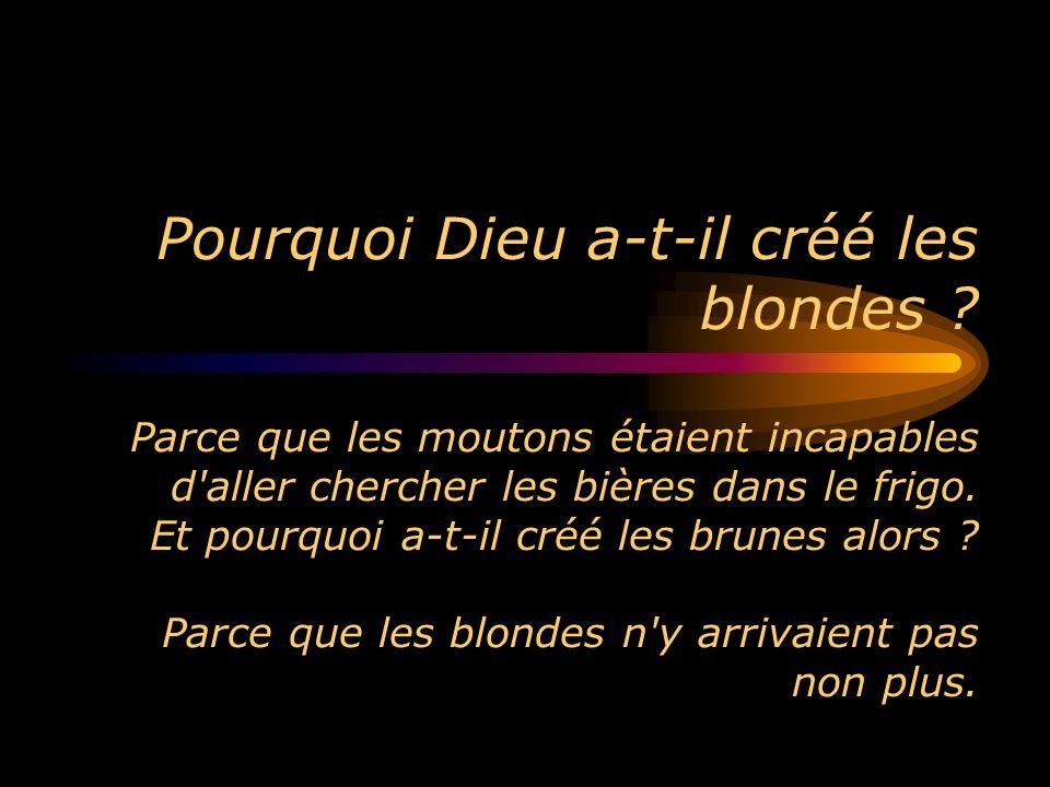 Pourquoi Dieu a-t-il créé les blondes ? Parce que les moutons étaient incapables d'aller chercher les bières dans le frigo. Et pourquoi a-t-il créé le
