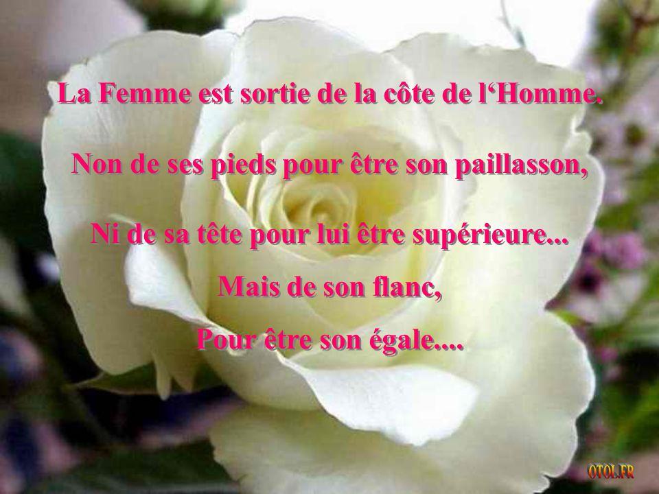...Prends bien garde de ne jamais faire pleurer une Femme, parce que Dieu compte ses larmes......