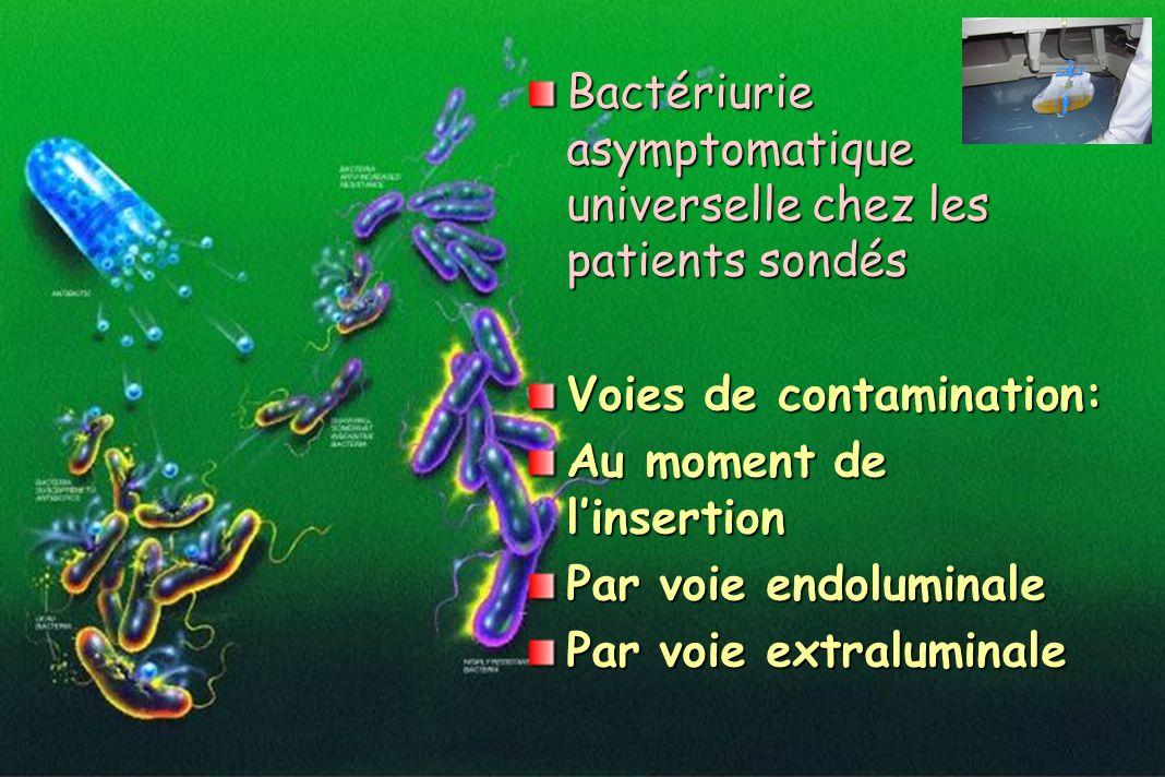 Bactériurie asymptomatique universelle chez les patients sondés Voies de contamination: Au moment de linsertion Par voie endoluminale Par voie extralu
