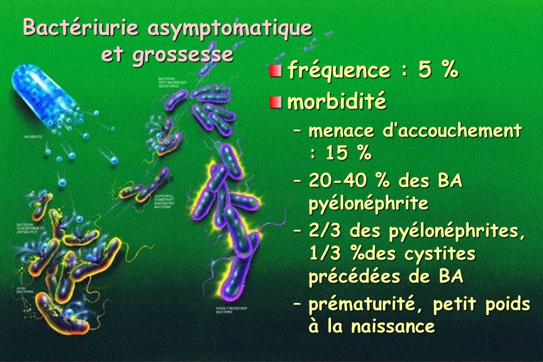 Bactériurie asymptomatique et grossesse fréquence : 5 % morbidité –menace daccouchement : 15 % –20-40 % des BA pyélonéphrite –2/3 des pyélonéphrites,