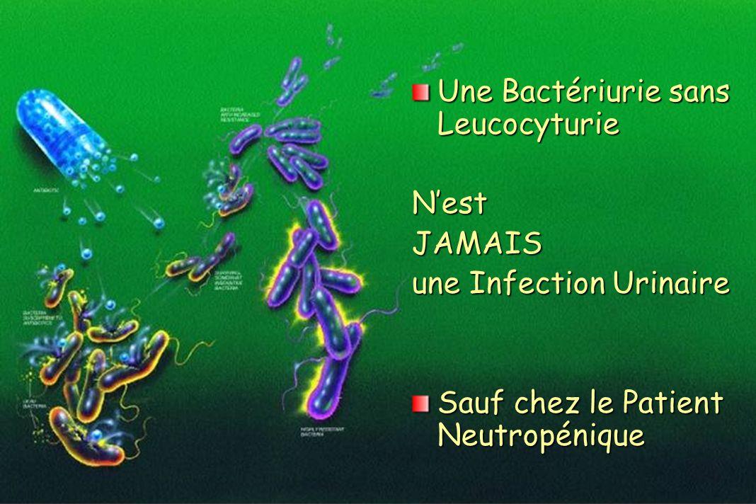 Une Bactériurie sans Leucocyturie NestJAMAIS une Infection Urinaire Sauf chez le Patient Neutropénique