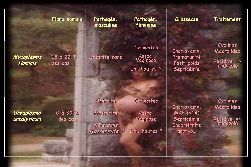 Flore nomale Pathogén.masculine Pathogén. féminine GrossesseTraitementMycoplasmaHominis 13 à 22 % des cas Urétrite rare Cervicites Assoc. Vaginose Inf