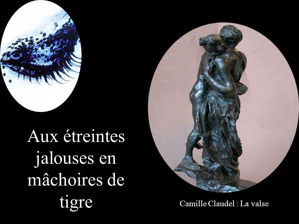 Aux cris d'oiseaux plaintifs dans ton sommeil d'enfant Rodin : LIllusion sœur dIcare