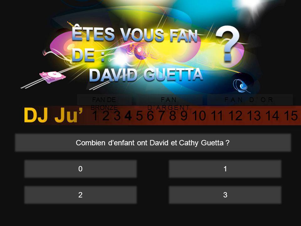 1 2 3 4 5 6 7 8 9 10 11 12 13 14 15 FAN DE BRONZE FAN DARGENT FAN DOR Combien denfant ont David et Cathy Guetta .