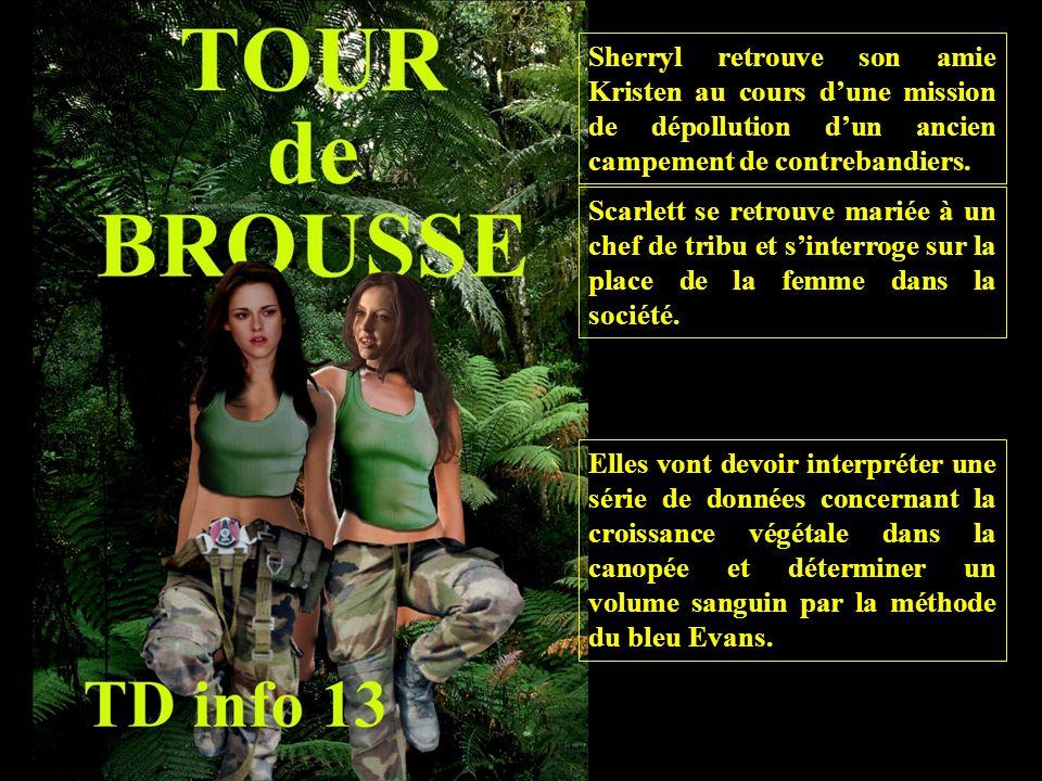 Sherryl retrouve son amie Kristen au cours dune mission de dépollution dun ancien campement de contrebandiers.