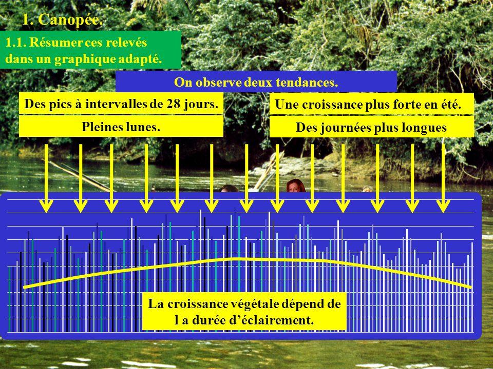 1. Canopée. 1.1. Résumer ces relevés dans un graphique adapté. On observe deux tendances. Des pics à intervalles de 28 jours. Une croissance plus fort