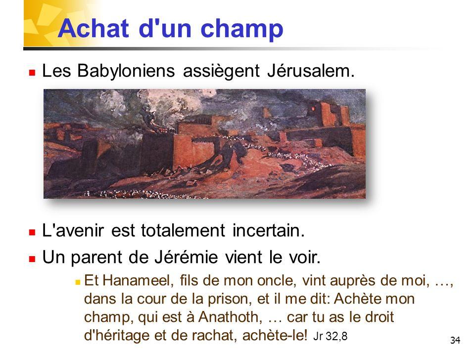 34 Achat d'un champ Les Babyloniens assiègent Jérusalem. L'avenir est totalement incertain. Un parent de Jérémie vient le voir. Et Hanameel, fils de m
