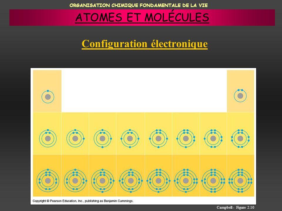 ORGANISATION CHIMIQUE FONDAMENTALE DE LA VIE Configuration électronique Campbell - Figure 2.10 ATOMES ET MOLÉCULES
