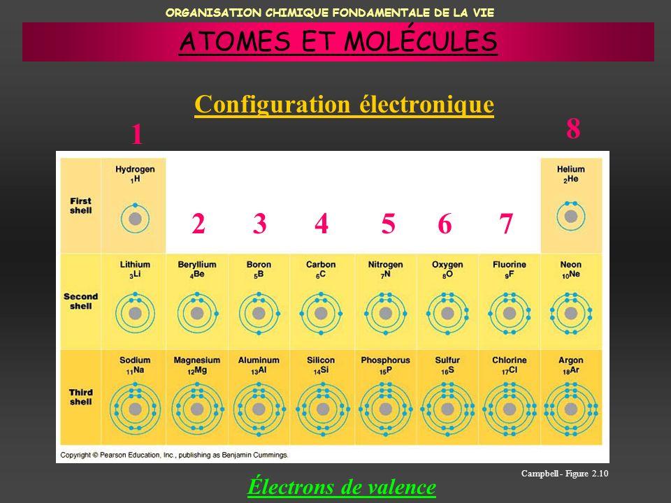 ORGANISATION CHIMIQUE FONDAMENTALE DE LA VIE Configuration électronique Campbell - Figure 2.10 1 234567 8 Électrons de valence ATOMES ET MOLÉCULES