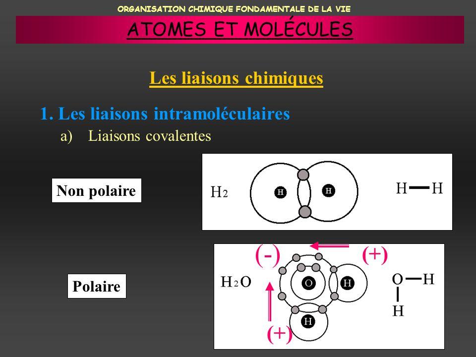 ORGANISATION CHIMIQUE FONDAMENTALE DE LA VIE 1. Les liaisons intramoléculaires a)Liaisons covalentes Non polaire Polaire (-) (+) ATOMES ET MOLÉCULES L