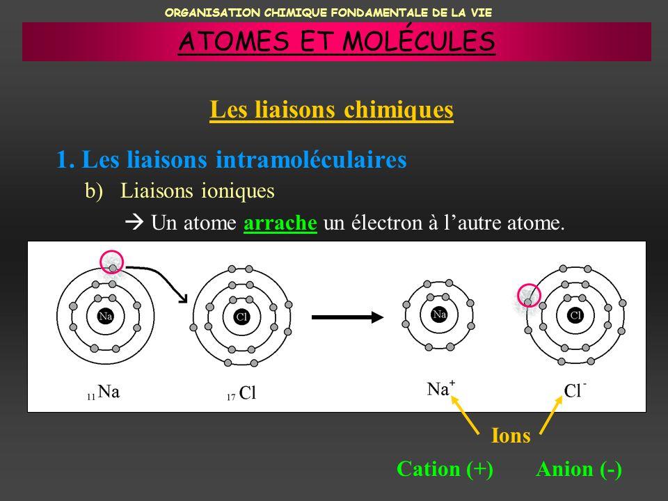 ORGANISATION CHIMIQUE FONDAMENTALE DE LA VIE 1. Les liaisons intramoléculaires b) Liaisons ioniques Un atome arrache un électron à lautre atome. Ions