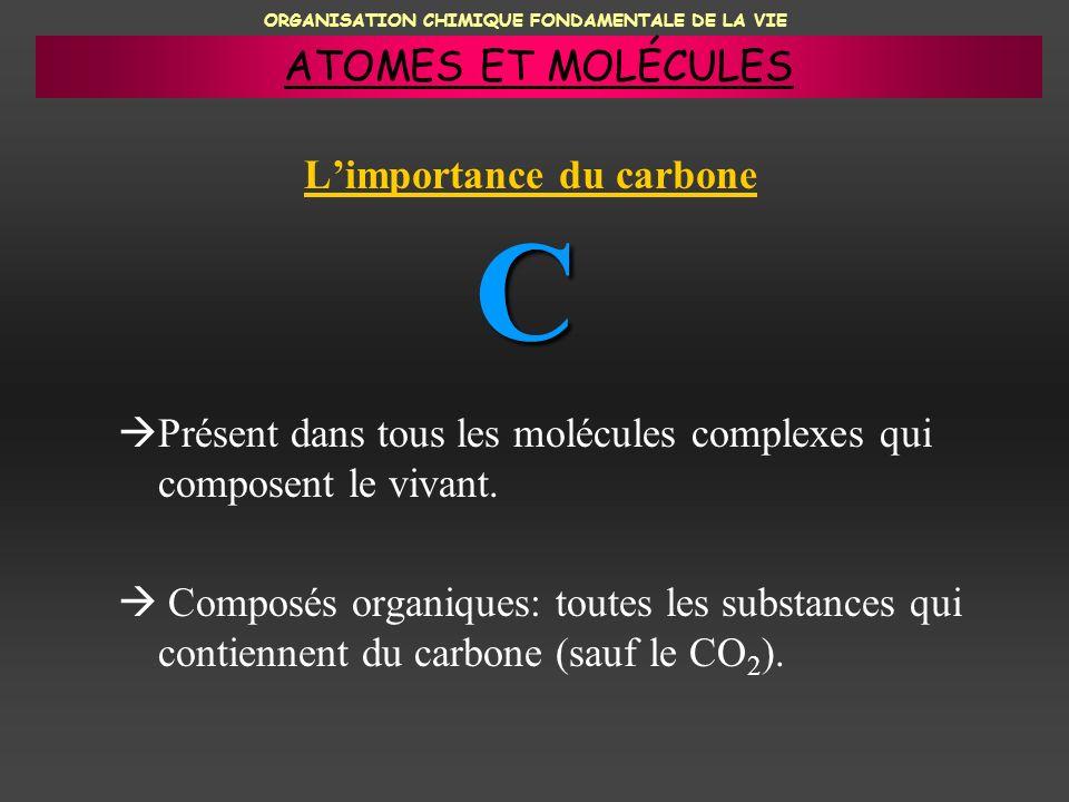 ORGANISATION CHIMIQUE FONDAMENTALE DE LA VIE Limportance du carbone Présent dans tous les molécules complexes qui composent le vivant. Composés organi