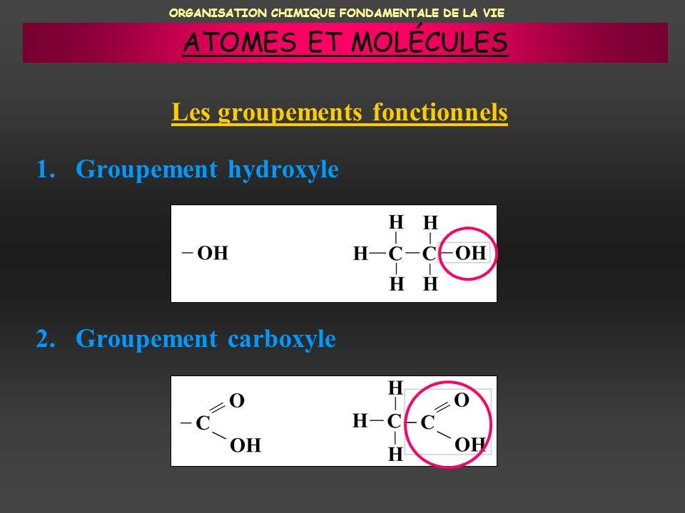 ORGANISATION CHIMIQUE FONDAMENTALE DE LA VIE Les groupements fonctionnels 1.Groupement hydroxyle 2.Groupement carboxyle ATOMES ET MOLÉCULES