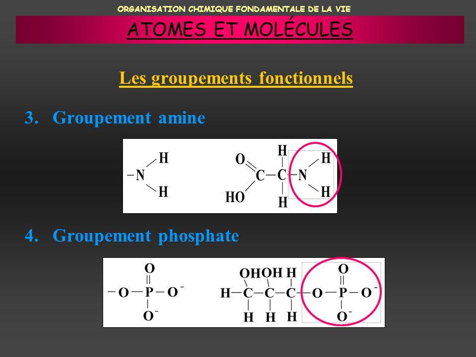 ORGANISATION CHIMIQUE FONDAMENTALE DE LA VIE Les groupements fonctionnels 3. Groupement amine 4. Groupement phosphate ATOMES ET MOLÉCULES
