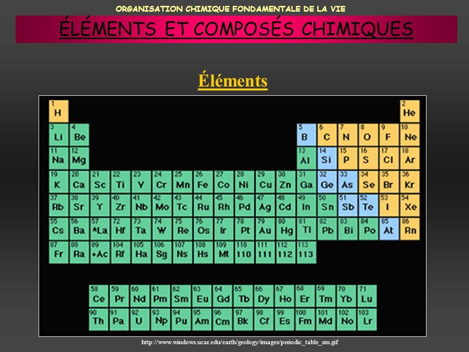 ORGANISATION CHIMIQUE FONDAMENTALE DE LA VIE Éléments http://www.windows.ucar.edu/earth/geology/images/periodic_table_sm.gif ÉLÉMENTS ET COMPOSÉS CHIM