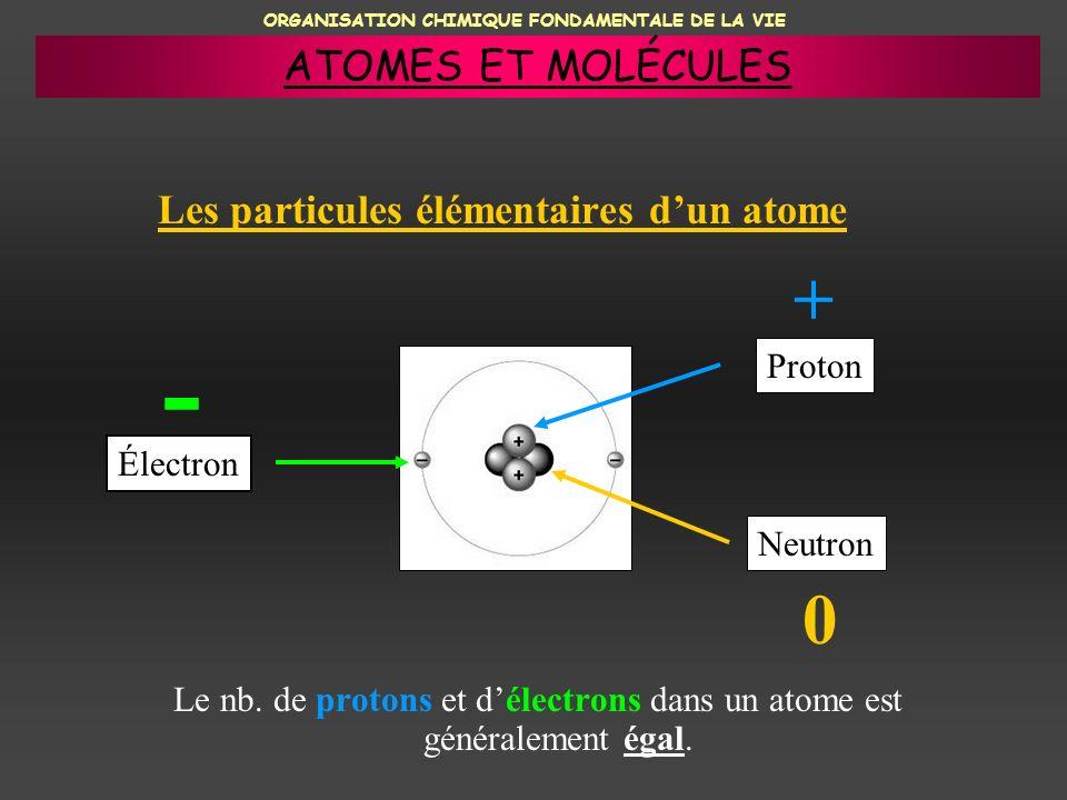 ORGANISATION CHIMIQUE FONDAMENTALE DE LA VIE Les particules élémentaires dun atome Le nb. de protons et délectrons dans un atome est généralement égal