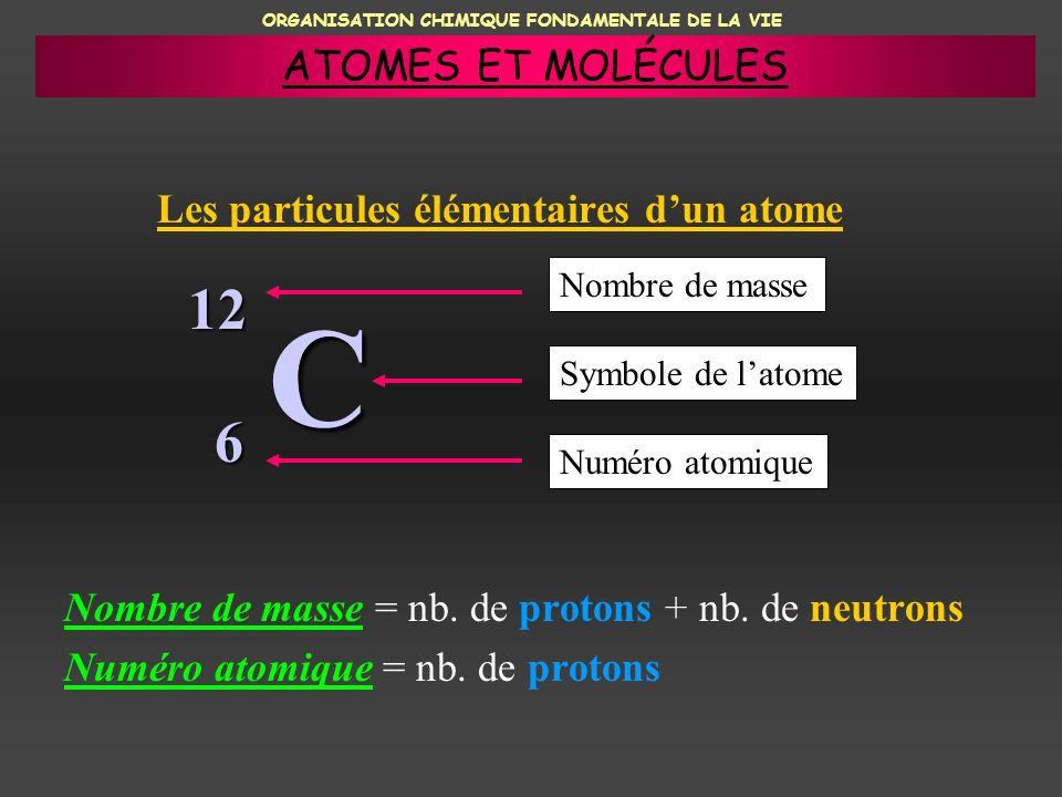 ORGANISATION CHIMIQUE FONDAMENTALE DE LA VIE C Nombre de masse = nb. de protons + nb. de neutrons Numéro atomique = nb. de protons 12 6 Nombre de mass